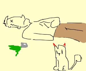 Devil cat poisoned a person