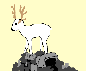 A really, really white deer standing on stuff.