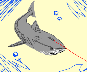 Laser Shark (With a laser pointer for cats)