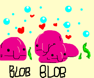 A family of blobfish