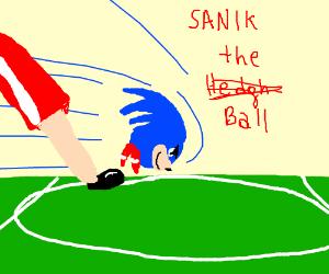 Sanik playing soccer.