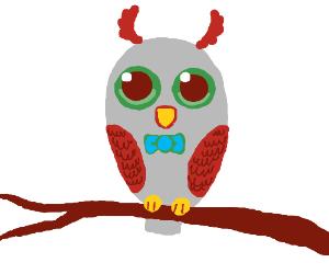 bow tie owl