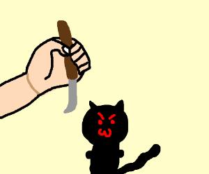 hand threatens evil kitten with letter opener