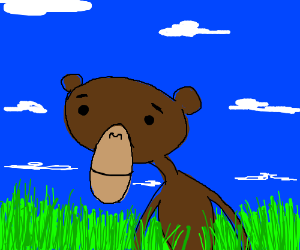 Monkey in the grass