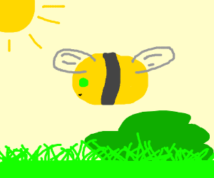 bee with emerald eyes and misplaced wings