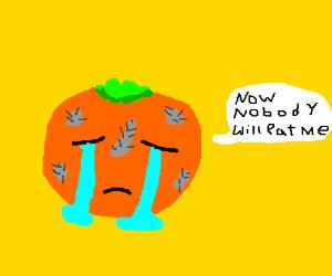 poor orange cries because it's mouldy