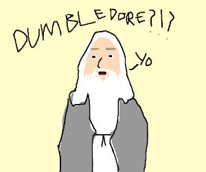 Dumbledore?!
