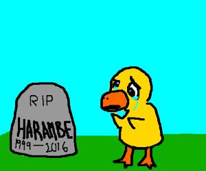 Duck cries. RIP Harambe
