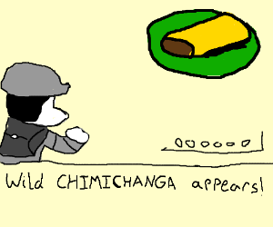 A wild chimichanga appeared
