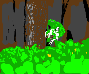 green fox in the forest