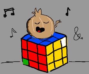 Onion singing on Rubiks Cube