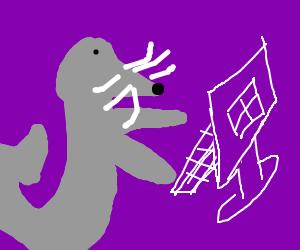 seal browsing his pc