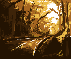 A calm road in the woods