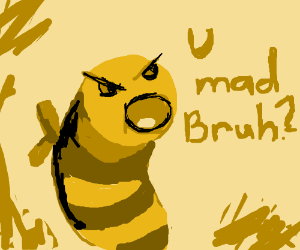 are you mad bro bee
