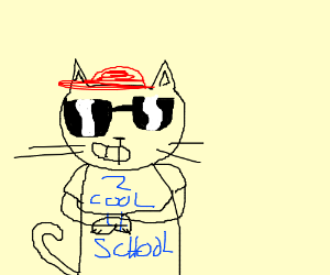cool sick cat