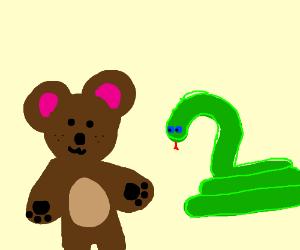 Snake and a bear