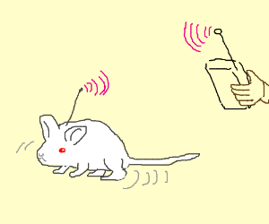 remote controlled mouse