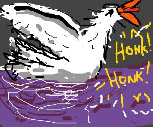 Honk Honk! I'm a fking goose!