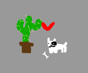 Dog and Cactus: Friends Forever