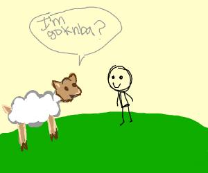 """""""I'm goknba?"""" Asks a sheep."""