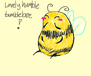 a lovely bumblebee