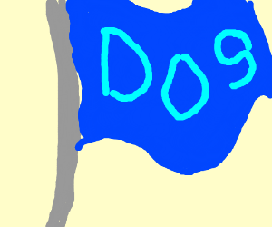 a ripped DOS flag