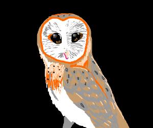 One Owl, Please