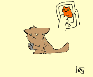 Warrior cat sadly looks at iphone