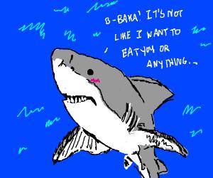 Tsundere shark