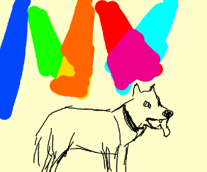 Dog standing under many different color lights