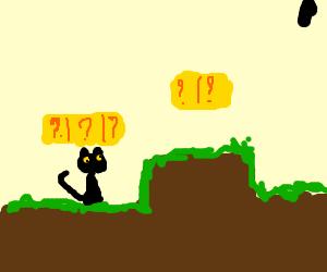 Black Cat Adventure