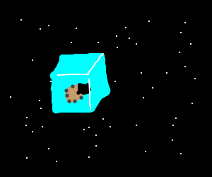 Beetle stuck in ice cube in space