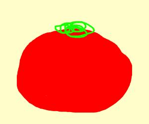 still life tomato