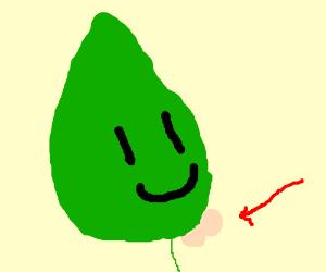 Leafy's chin