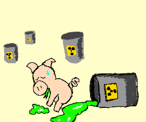 Pig with radiation sickness