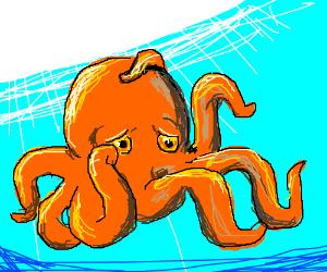 octopus is sad.