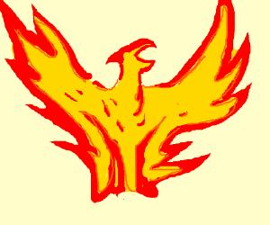 flaming bird