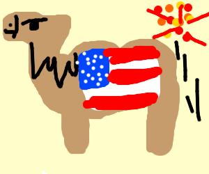 Patriotic Camel