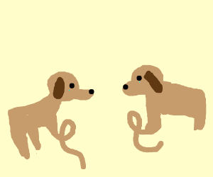 Two dogs with one deformed leg