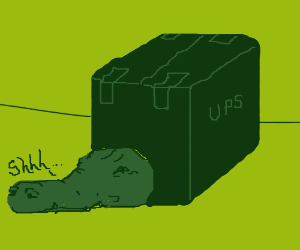 Crocodile hides in box