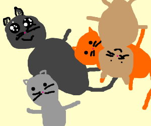 panel full of cats