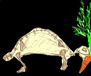 Skeletal turtle eats a carrot
