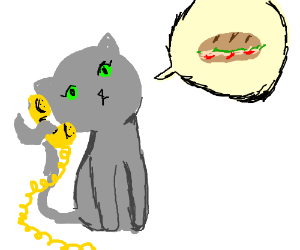 cat orders a sandwich for delivery
