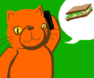 cat wabts to order a sandwich