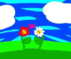 2 flowers in love