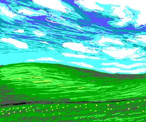Windows field wallpaper.