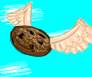 "IT""S A FLYING COOKIE!!"
