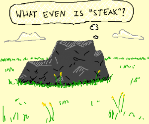 a shady rock ponders steak
