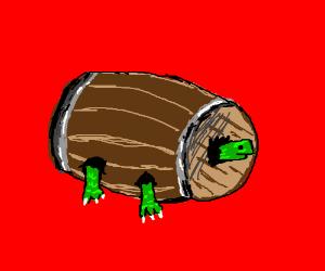 Turtle in a barrel