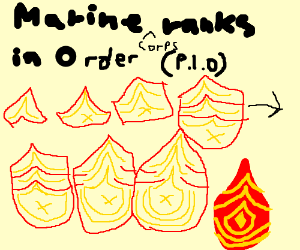 Marine Ranks In Order >> Marine Corps Ranks In Order P I O Drawception